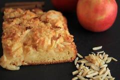Fresh homemade apple pie on black background Stock Images