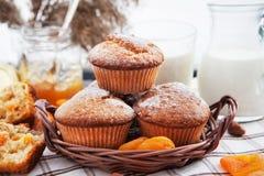 Fresh homemade apricot muffins Stock Photo