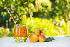 Fresh homemade apricot smoothies in the summer garden. Summer detox drinks. Refreshing drink from apricots and peaches. Fresh homemade apricot smoothies in the stock photos