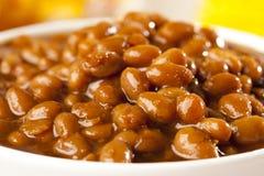 Fresh Homemade BBQ Baked Beans Stock Photography
