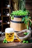 Fresh homemade beer Royalty Free Stock Photo