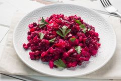 Fresh homemade Beetroot salad Vinaigrette in a white bowl. Traditional Russian food.  stock images