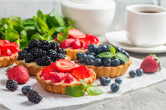 Fresh homemade berrie tarts. With blueberries, blackberry and strawberries on gray background royalty free stock photography