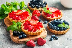 Fresh homemade berrie tarts. With blueberries, blackberry and strawberries on gray background stock photography