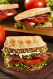 Fresh Homemade BLT Sandwich Stock Image