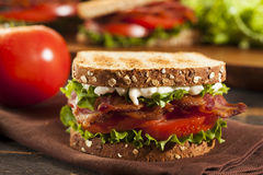 Fresh Homemade BLT Sandwich Stock Photos