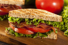 Fresh Homemade BLT Sandwich Stock Image