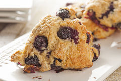 Fresh Homemade Blueberry Breakfast Scones Stock Image