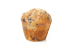 Fresh Homemade blueberry Muffin Royalty Free Stock Image