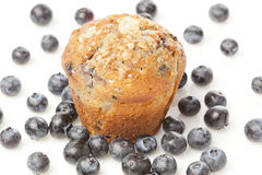 Fresh Homemade blueberry Muffin Royalty Free Stock Images