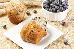 Fresh Homemade blueberry Muffin Stock Images