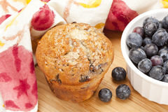 Fresh Homemade blueberry Muffin Royalty Free Stock Photos