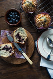 Fresh homemade blueberry muffin, cut in half Royalty Free Stock Image