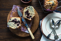 Fresh homemade blueberry muffin, cut in half Royalty Free Stock Photo