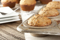 Fresh Homemade Bran Muffins Stock Image