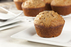 Fresh Homemade Bran Muffins Royalty Free Stock Photos
