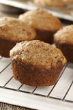 Fresh Homemade Bran Muffins Stock Photography