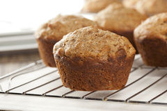 Fresh Homemade Bran Muffins Royalty Free Stock Images
