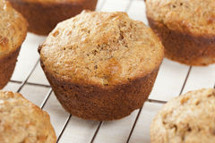 Fresh Homemade Bran Muffins. Made with Whole Wheat Stock Photos
