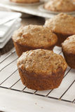 Fresh Homemade Bran Muffins Stock Photos