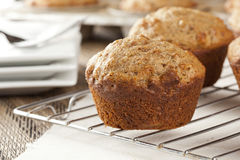 Fresh Homemade Bran Muffins. Made with Whole Wheat Stock Image
