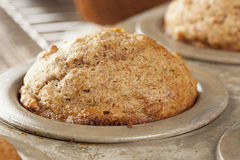 Fresh Homemade Bran Muffins Royalty Free Stock Photography