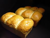 Fresh Homemade Bread Royalty Free Stock Photography