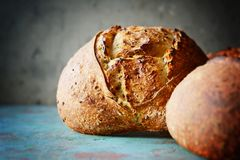 Fresh homemade bread on a gray-blue background, on whole wheat flour. French bread round shape. Bread baking. Unleavened bread stock photo