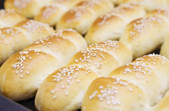 Fresh homemade bread rolls with sesam seed in basket on wooden t Stock Image