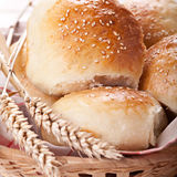Home made bread rolls Stock Image