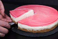 Fresh homemade cheesecake with pink jelly Stock Photos