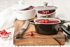 Fresh homemade chicken liver pate rabbit, goose. With cranberry sauce. Gourmet appetizer. Selective focus royalty free stock photos