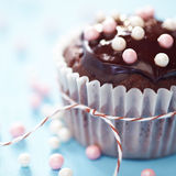 Fresh Homemade Chocolate Cupcakes Stock Photo
