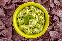 Fresh Homemade Chunky Guacamole Dip. Homemade chunky guacamole in bright green bowl surrounded by blue corn tortilla chips Royalty Free Stock Photo