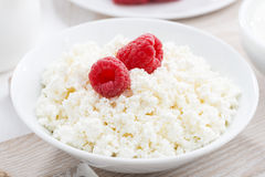 Fresh homemade cottage cheese with raspberry, close-up. Horizontal Royalty Free Stock Photography