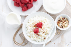 Fresh homemade cottage cheese with raspberry, milk and yogurt. On white table, top view, horizontal Royalty Free Stock Images