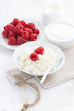 Fresh homemade cottage cheese with raspberry, milk and yogurt. On white table, vertical, top view Royalty Free Stock Photography