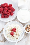 Fresh homemade cottage cheese with raspberry, milk and yogurt. On white table, vertical, top view, close-up Royalty Free Stock Images