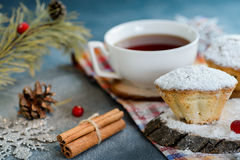 Fresh homemade cranberry muffins in icing sugar with fir-tree branches and tea. Royalty Free Stock Photography