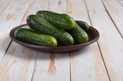 Fresh homemade cucumbers Royalty Free Stock Photos