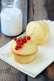 Fresh homemade cupcake Royalty Free Stock Image