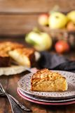 Fresh homemade delicious apple cake stock image
