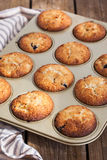 Fresh homemade delicious apple muffins Stock Photography