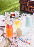 Fresh homemade fruit juice blend for a picnic Royalty Free Stock Photo