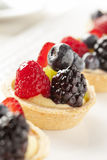 Fresh Homemade Fruit Tart Royalty Free Stock Image
