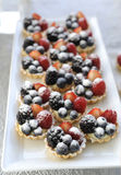 Fresh Homemade Fruit Tart Royalty Free Stock Photography