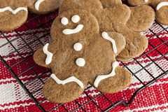 Fresh Homemade Gingerbread Men royalty free stock photo