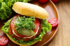 Fresh homemade hamburger with vegetables and salad Stock Images