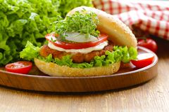 Fresh homemade hamburger with vegetables and salad Stock Photo