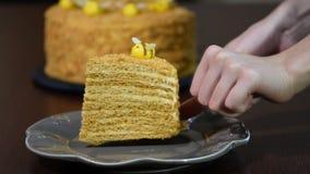 Fresh homemade honey cake `Medovik`. Put in a bowl a piece of honey cake